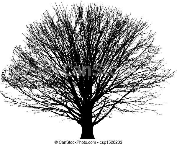 bare tree vector background - csp1528203