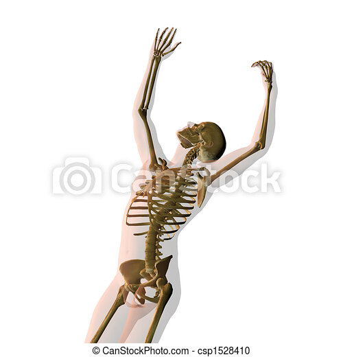 Transparent human male isolated on white reaching for stars with skeleton showing - csp1528410