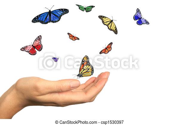Womans Hand Releasing Beautiful Butterflies - csp1530397
