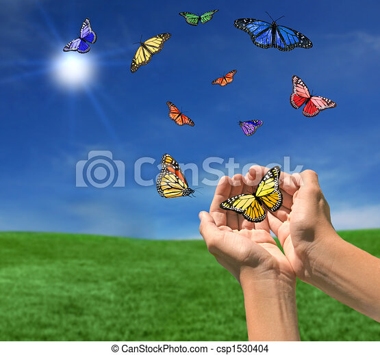 Butterflies Flying Outdoors Towards the Sun - csp1530404