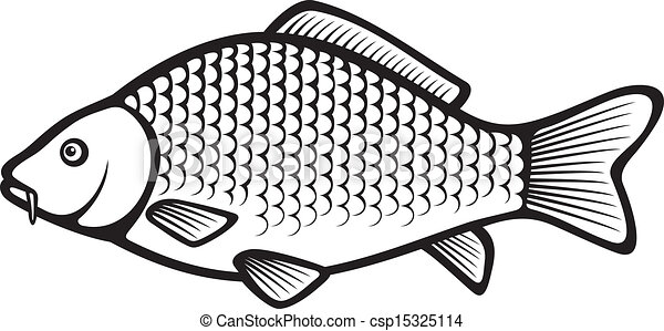 Carp Fish  mon Carp 15325114 likewise Carousel In  pass 7138855 together with Set Of Vintage Victorian Ornaments 25417581 moreover Skulls With Playing Cards 11232015 besides Japanese Koi 10086800. on vintage plans