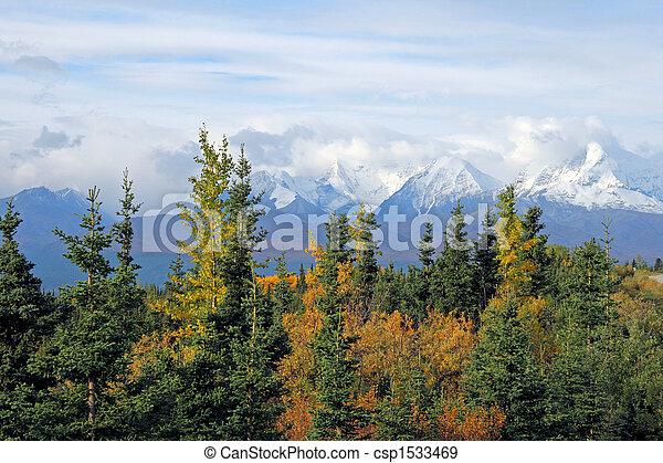 Alaskan Vista - csp1533469