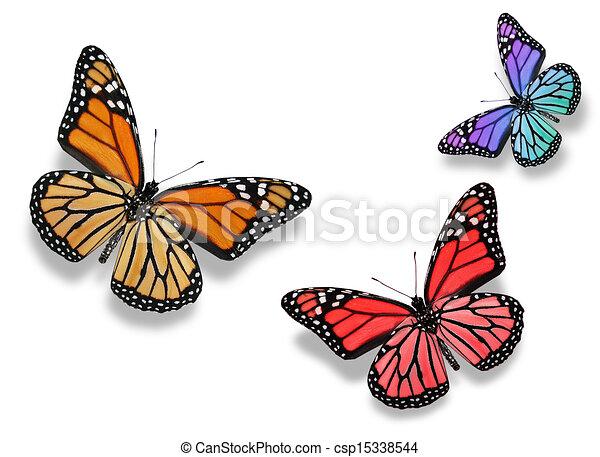 Dessin de couleur papillons trois trois couleur - Papillon dessin couleur ...