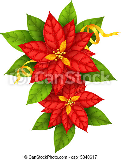 Christmas Star flowers poinsettia with gold ribbon - csp15340617