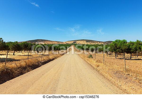 long, directement, gravier, route - csp15346276