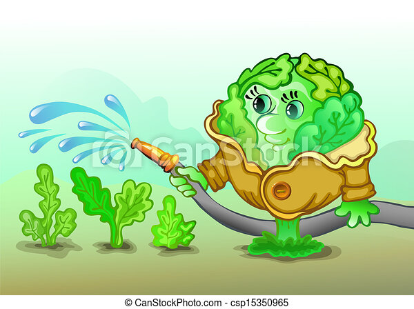 Clip Art Vector of Cabbage A cabbage pours a vegetable garden