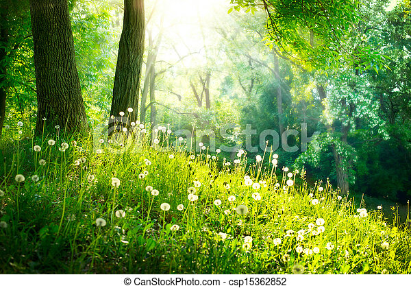 hermoso, paisaje, primavera, naturaleza, árboles, verde, pasto o césped - csp15362852