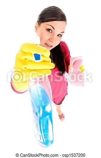 housework - csp1537200