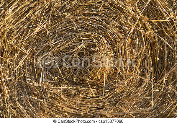 Stock Image of Image of round hay bales for use as background ...