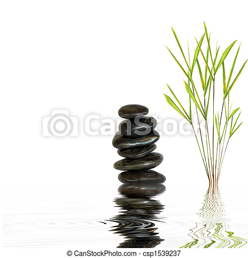 Spa Stones and Bamboo Leaf Grass - csp1539237