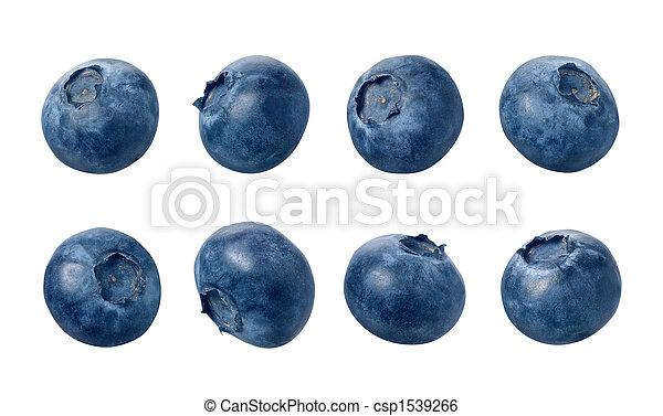 Blueberries - csp1539266