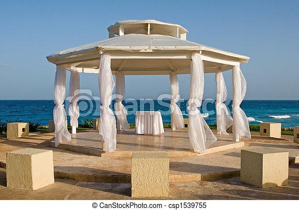 Tropical Wedding - csp1539755