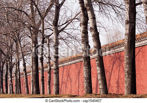 árbol, muralla - csp1540407