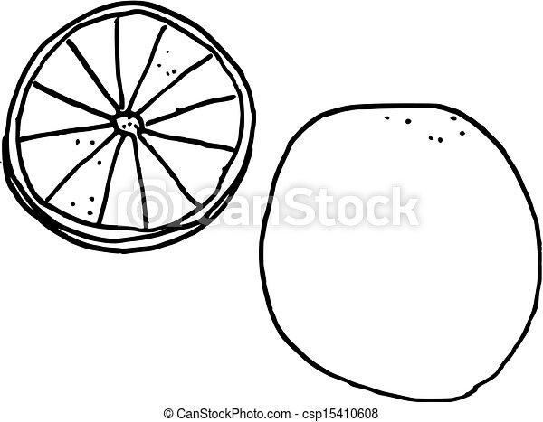 Vector Clipart of hand drawn sliced lemon or orange ...