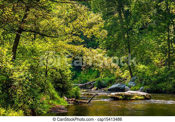 Beautiful stream scene along Gunpowder Falls in Baltimore County - csp15413486