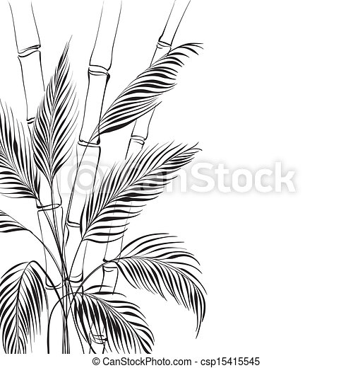 Palm Tree Over Bamboo Drawing