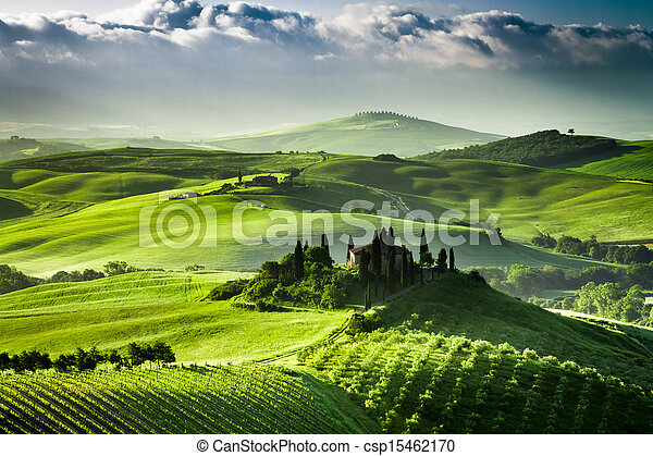 Sunrise over farm of olive groves and vineyards in  Tuscany - csp15462170
