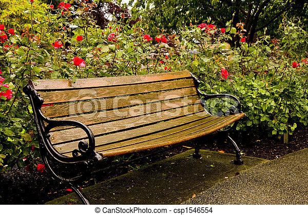 photo de parc rose vieux banc jardin an vieux bois et fer csp1546554 recherchez. Black Bedroom Furniture Sets. Home Design Ideas