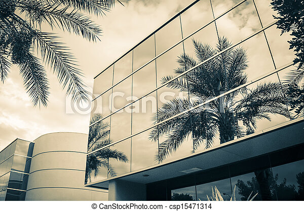 Modern office building with palm tr - csp15471314