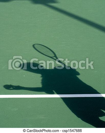 Shadow of Netman