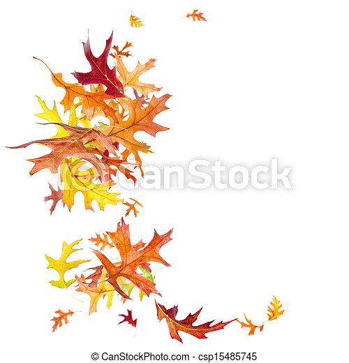 Falling Autumn Leaves - csp15485745