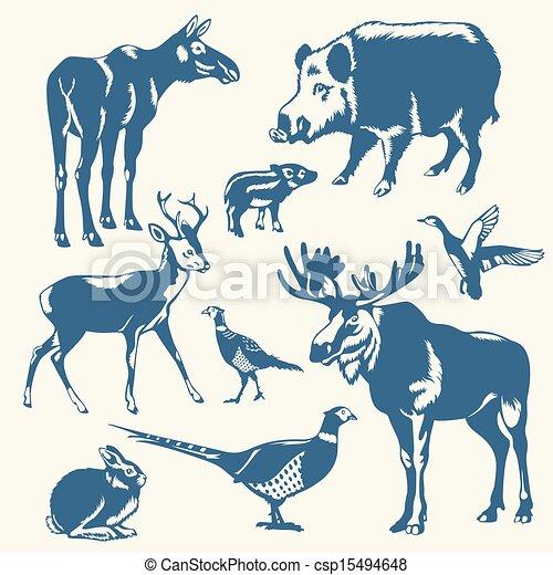 wild animals on a white background - csp15494648