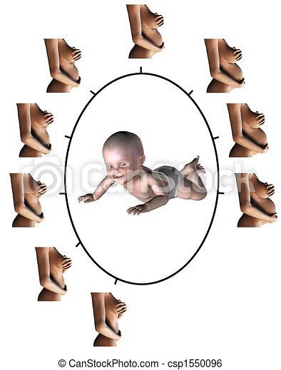 stock illustration von 9 schwangerschaft monat ein bild ausstellung der csp1550096. Black Bedroom Furniture Sets. Home Design Ideas