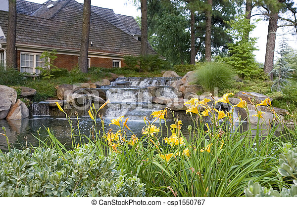 Day Lillies by Neighborhood Lake - csp1550767