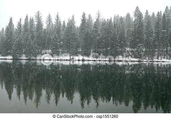inverno, pomeriggio - csp1551260