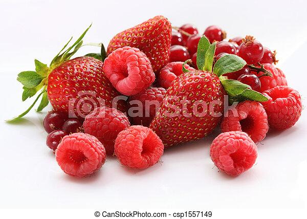 berries - csp1557149