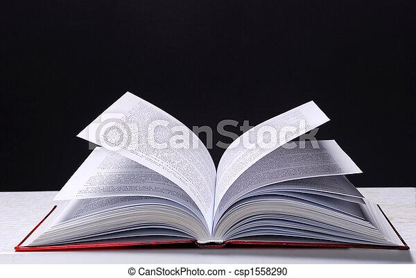 Open book - csp1558290