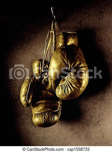 Boxing gloves - csp1558733