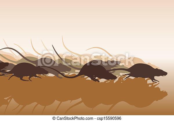 Rat race - csp15590596