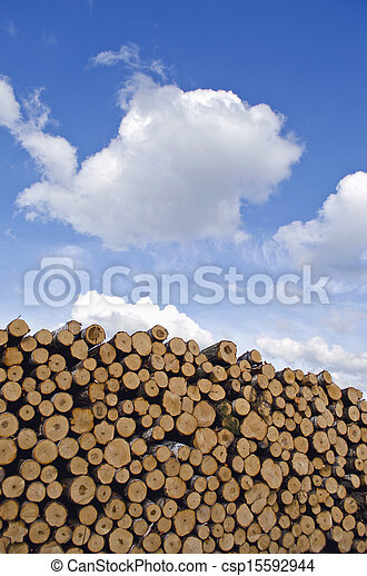 industrial timber pile log stack and sky - csp15592944
