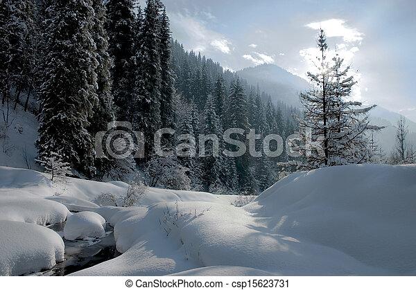 Winter on mountain side - csp15623731