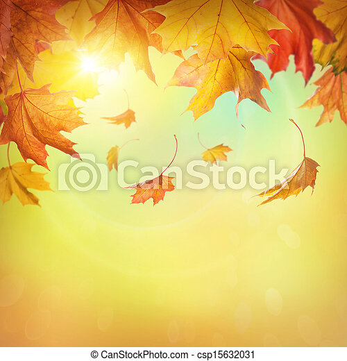 Autumn falling leaves  - csp15632031