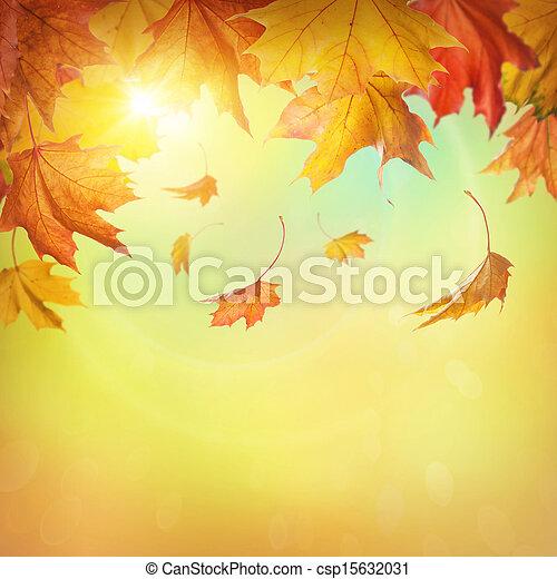 Autumn falling leaves  - csp15632031