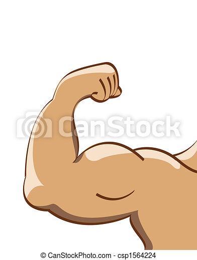 Dessin de muscle, homme - Illustration, muscle, homme csp1564224 ...