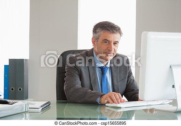 Smiling businessman using computer at office - csp15655895