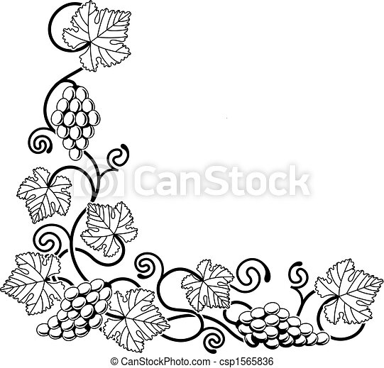 Grape vine design element - csp1565836