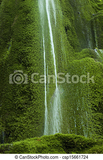 mossy waterfall  - csp15661724