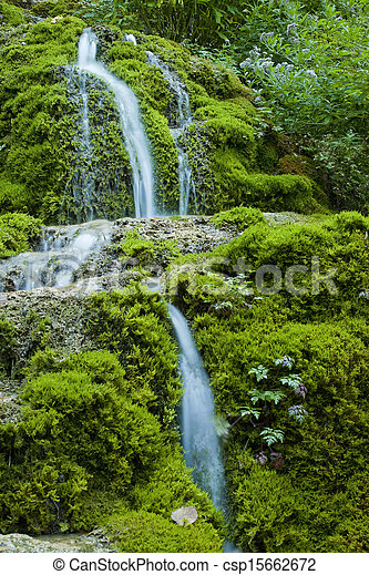 mossy waterfall - csp15662672