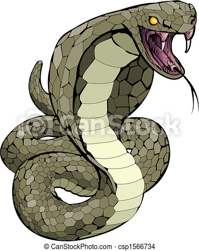 Cobra snake about to strike illustration - csp1566734