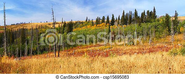 Montana Autumn Scenery - csp15695083