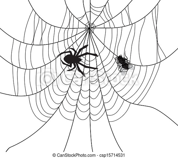 Vectors Of Vector Spider Web And A Caught Fly Vector