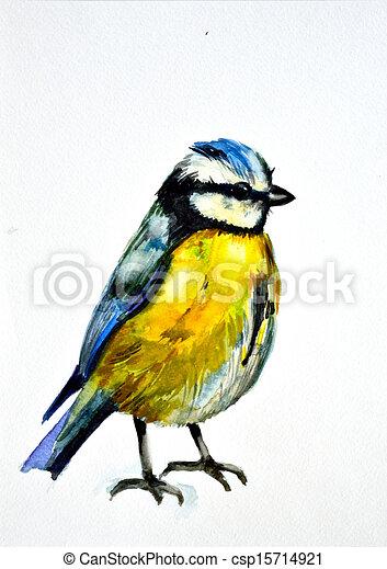 watercolor drawing of cute bird - csp15714921