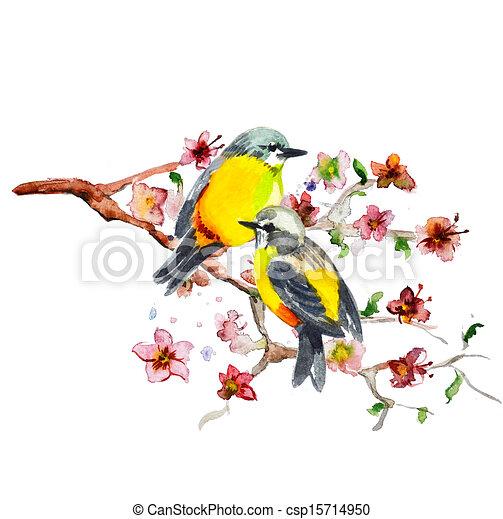 watercolor drawing of cute bird - csp15714950