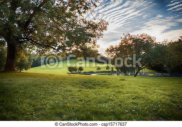 evening park  - csp15717637