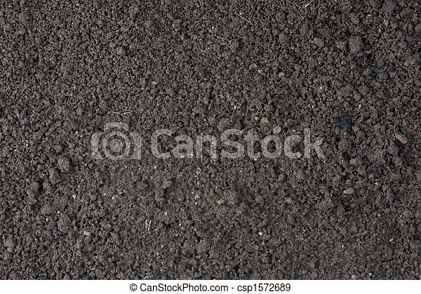 garden moist top soil background - csp1572689
