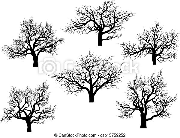 Silhouettes of oak trees. - csp15759252